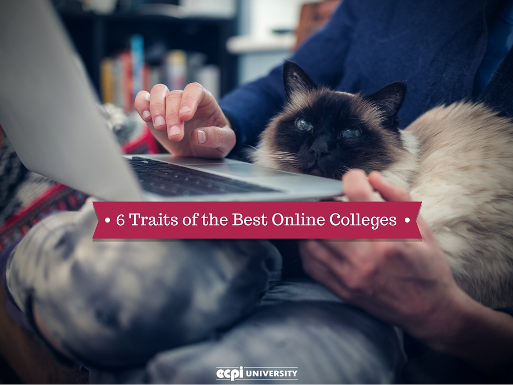 When it comes to online colleges/universities which are the best?