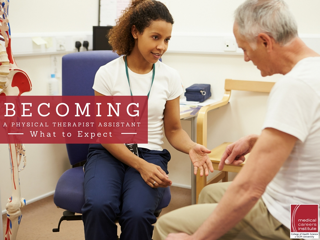 Career in physical therapy - Become A Physical Therapist Assistant