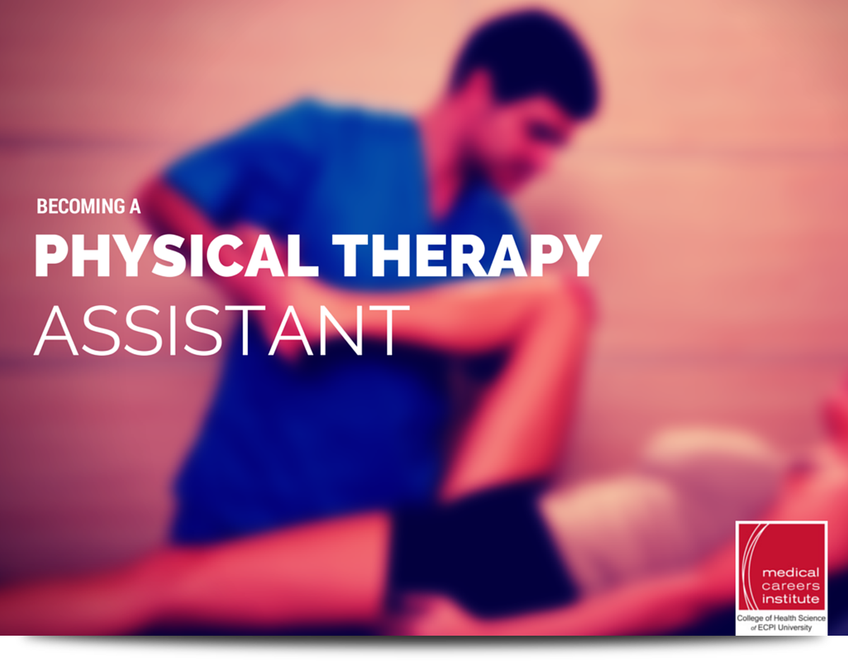 Physical Therapist Assistant most academic colleges