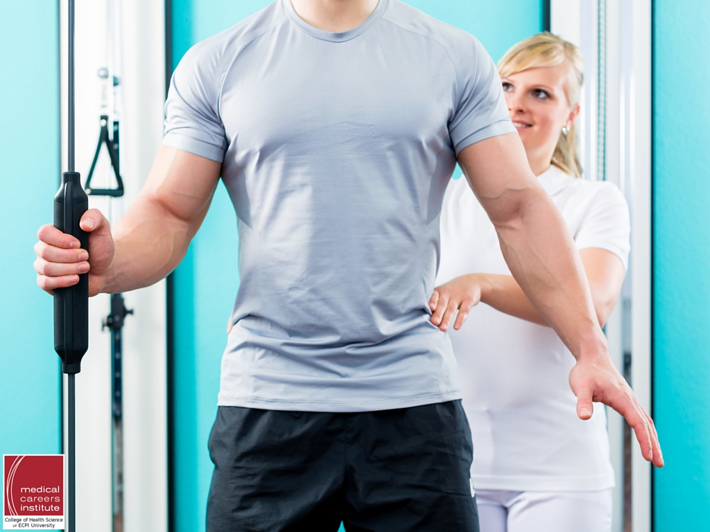Career in physical therapy - Career In Physical Therapy