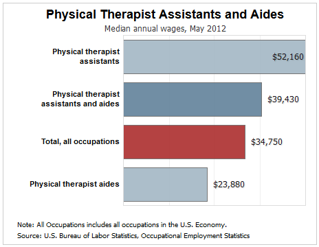 how much does a physical therapist assistant make? | ecpi university, Human Body