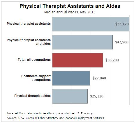 physical therapy assistant projected industry growth, Human Body