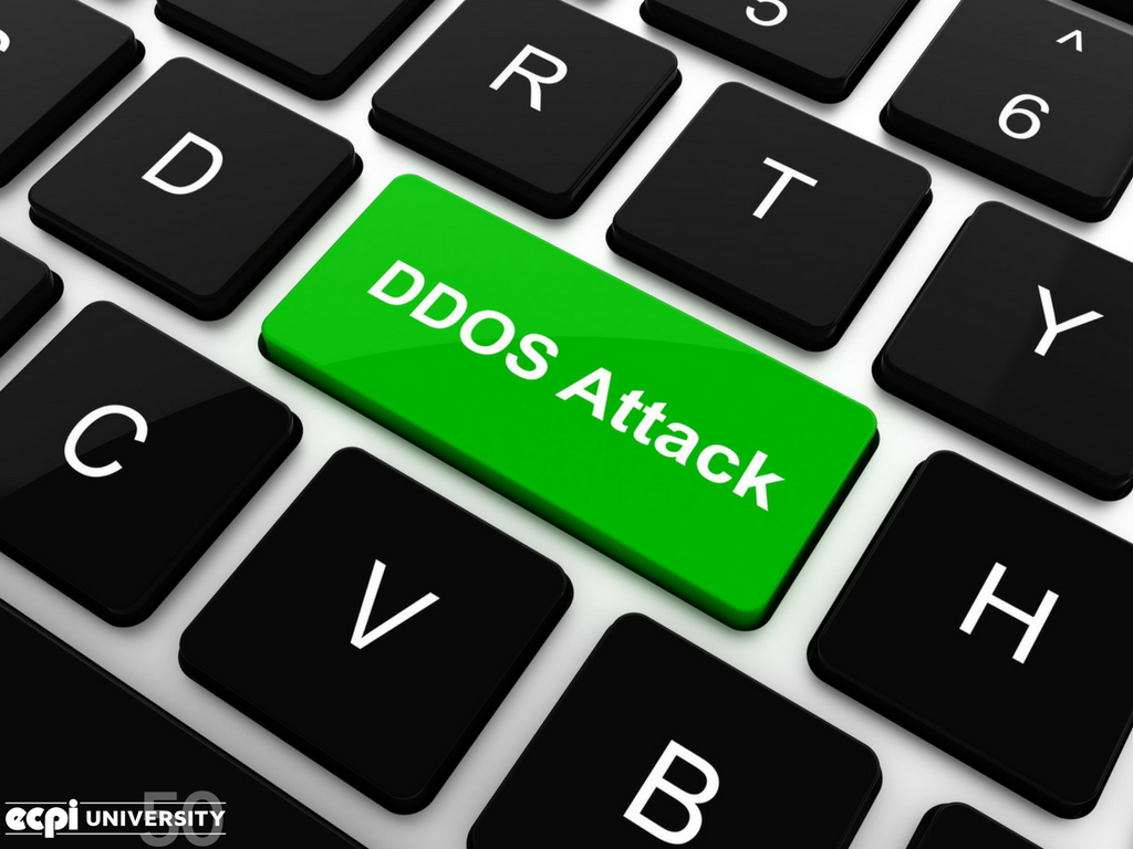 What is a Denial of Service Attack?