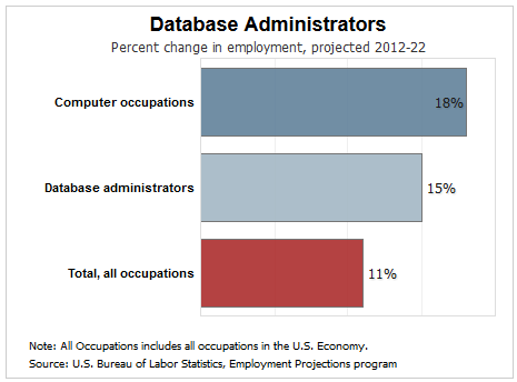 how does the future look for database programmers - Clinical Database Programmer