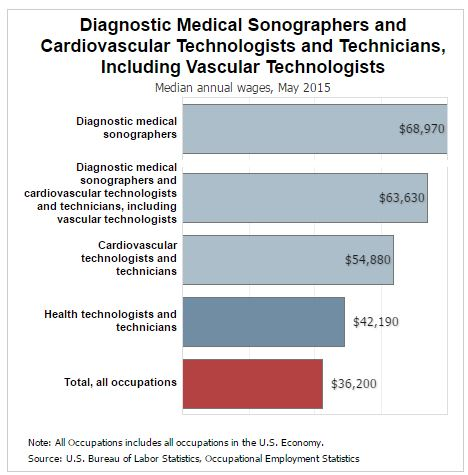 is diagnostic medical sonography a good career?, Human Body