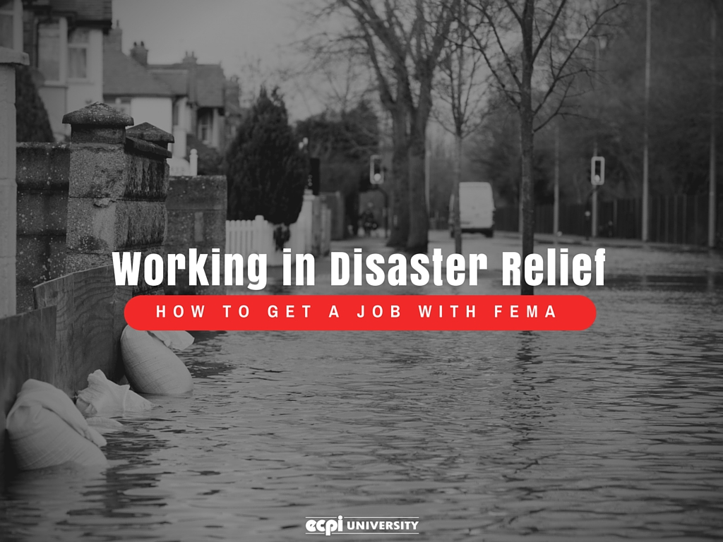 how to get a job with FEMA working in disaster relief