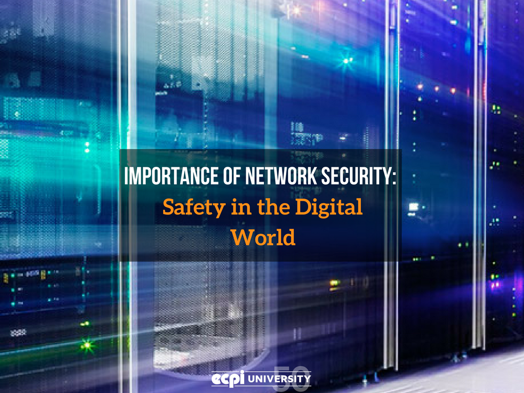 Importance of Network Security: Safety in the Digital World