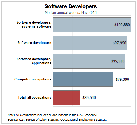 how to build a career as software developer