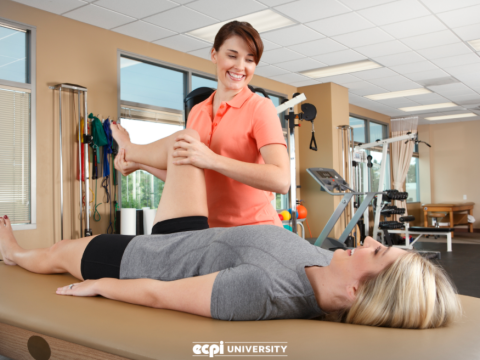Is Physical Therapist Assistant School Hard?