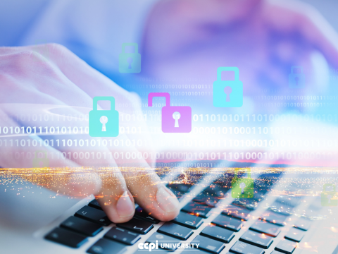 How Does Digital Forensics Work as a Career?