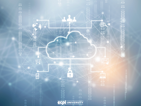 What Skills Do You Need for Cloud Computing in Today's Market?