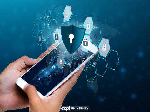 Network Security: Tips and Tricks You Could Learn in College
