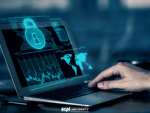 What kind of Degree do You Need for Cyber Security Work Today?