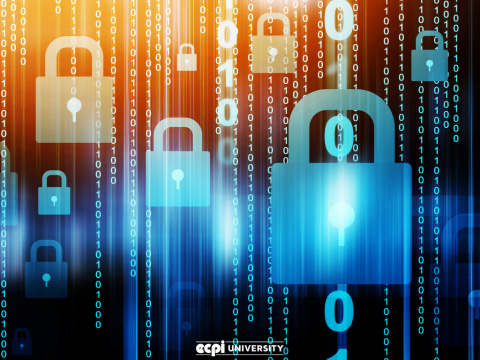 Cyber Security Career Pathway: How Does Formal Education Play a Part?