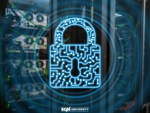 How Do You Pursue a Career in Cyber Security: Will I Need a Degree?