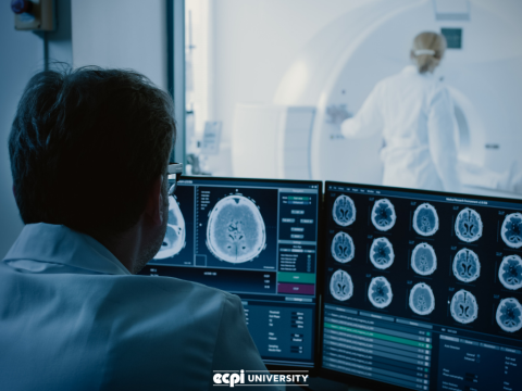 What Can I Do with a Bachelor of Science Degree in Radiologic Sciences?