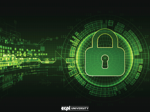 Cybersecurity Masters Programs: What Can I Expect to Learn in a Program?