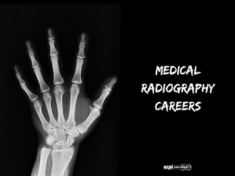 Medical Radiography Careers: What are they Like?