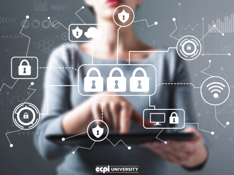 How Do You Get Trained for Cyber Security: Is an Online Degree Program an Option?