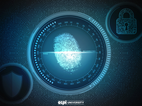 Advice for Prospective Digital Forensics Students: What Do You Need to Know?