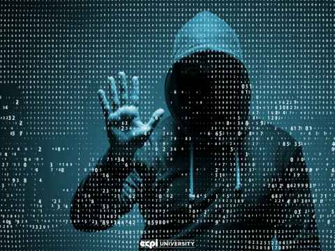 Why Do Hackers Hack Websites and How Can I Help Stop Them?