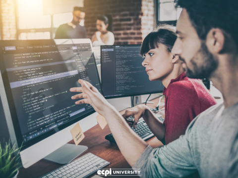 Web Development Languages You Will Learn at a University