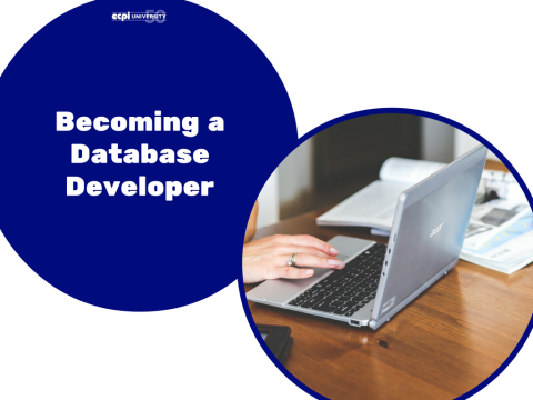​How do I become a Database Developer?