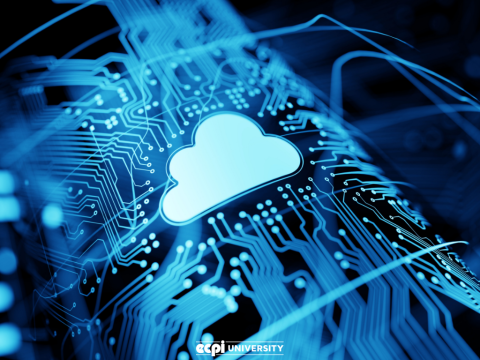 Where is Cloud Computing Going and How Can I Go With It?