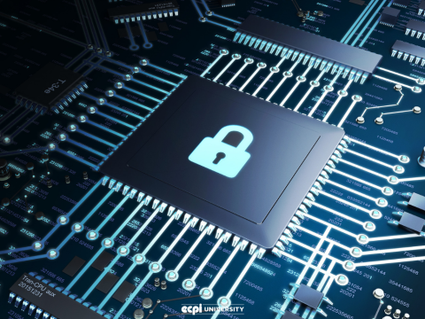 Which Cyber Security Course is Best: Learning on your Own or Formal Education?
