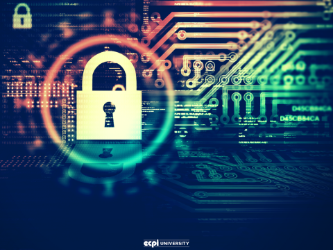 Cybersecurity Master's Degrees: Why Are They Important?