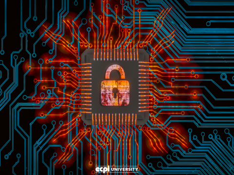 Cybersecurity Education You Can Earn Through a Formal Degree Program