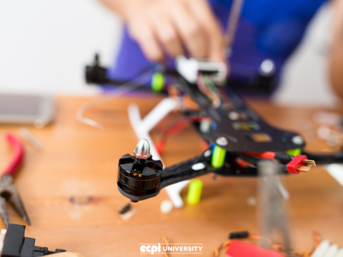 Where Can Mechatronics Engineering Technologists Put their Skills to Use?
