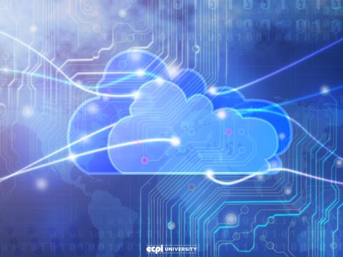 Cloud Computing Competencies: What Should a Bachelor's Degree Program Teach Me?