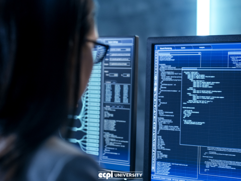 Master's Degree in Cybersecurity: Worth it For Someone Who Wants to Be a Manager?