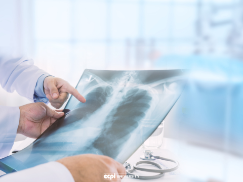 What Does Medical Radiographer Mean: Is it a Career for Me?
