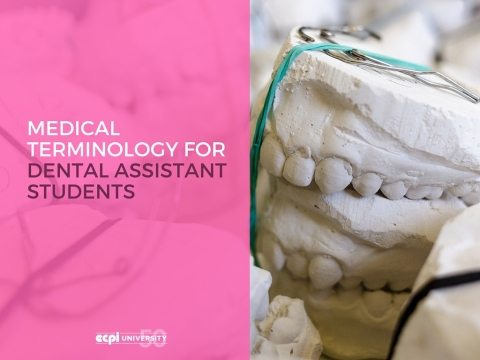 Medical Terminology for Dental Assistant Students