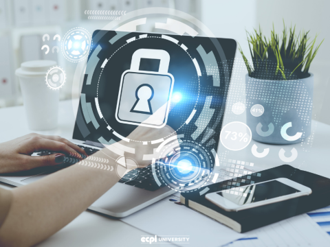 Is Network Security a Good Career for Me?