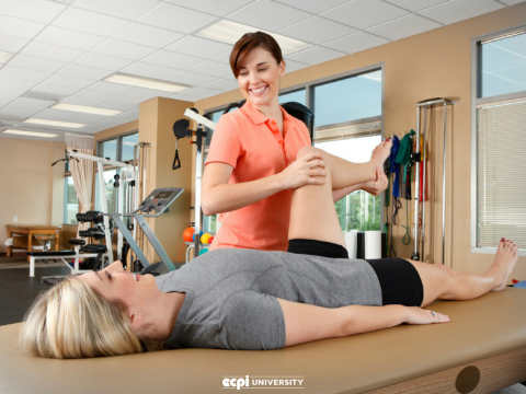 How Do You Like Being a Physical Therapist Assistant?